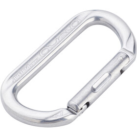 AustriAlpin Ovalo Snapgate Carabiner polished